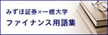 ファイナス用語集